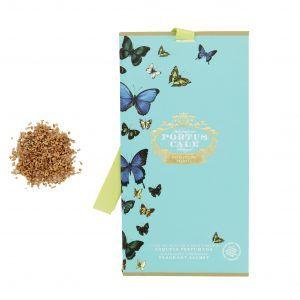 Butterflies Portus Cale